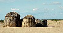Африканское поселение